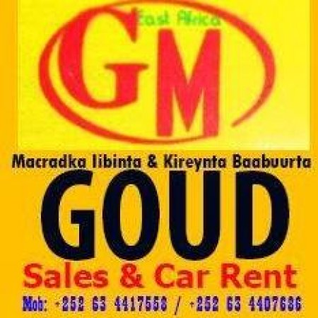 Goud Motor sales & Rental
